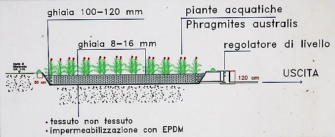 impianto_fitodepurazione