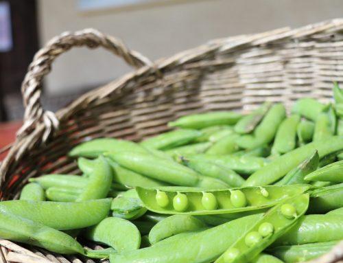 Mange-tout or peas?
