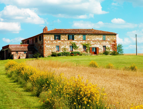 Vacanze in Toscana? Consigliamo l'agriturismo Il Rigo